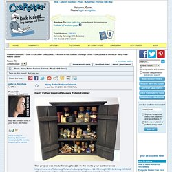 Harry Potter Potions Cabinet - CRAFTSTER CRAFT CHALLENGES