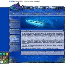 Coup de pouce plongée : cours de plongée, théorie plongée