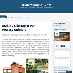 Making Life Easier For Poultry Animals