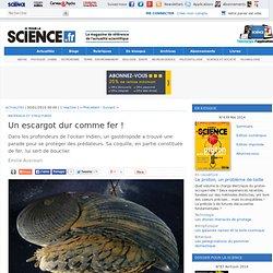 Pour la science - Actualité - Un escargot dur comme fer !