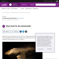 FRANCE CULTURE 26/09/18 LA METHODE SCIENTIFIQUE - Pour tout l'or du nanomonde