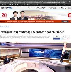 Pourquoi l'apprentissage ne marche pas en France