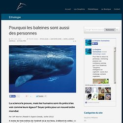 Pourquoi les baleines sont aussi des personnes
