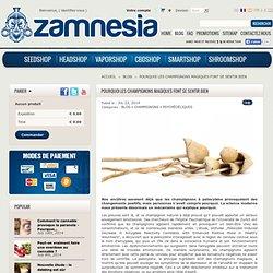 Pourquoi les champignons magiques font se sentir bien - Zamnesia