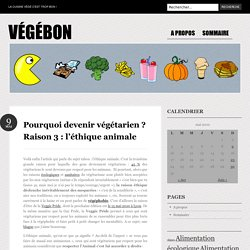 Pourquoi devenir végétarien ? Raison 3 : l'éthique animale