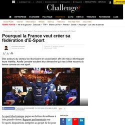 Pourquoi la France veut créer sa fédération d'E-Sport