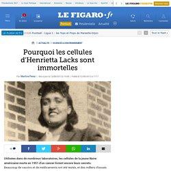 Pourquoi les cellules d'Henrietta Lacks sont immortelles