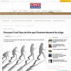 Pourquoi il est faux de dire que l'homme descend du singe