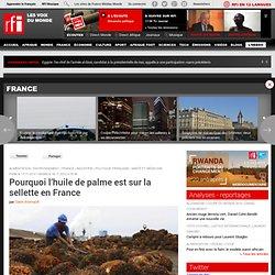 RFI 18/11/12 Pourquoi l'huile de palme est sur la sellette en France