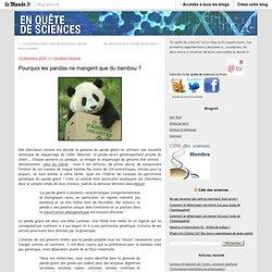 Pourquoi les pandas ne mangent que du bambou ? - En quête de sci