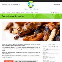 Pourquoi manger des insectes ?