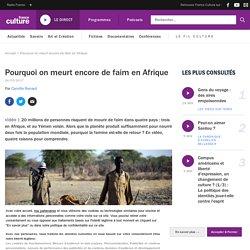 Pourquoi on meurt encore de faim en Afrique
