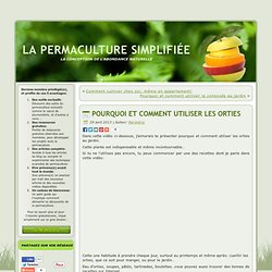 L 39 ortie plante m dicinale et gustative pearltrees - Quand utiliser le purin d ortie ...