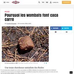 Pourquoi les wombats font caca carré