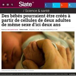 Des bébés pourraient être créés à partir de cellules de deux adultes de même sexe d'ici deux ans