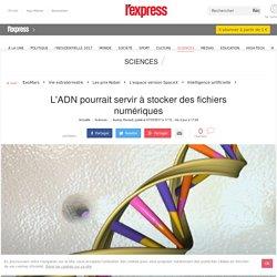 L'ADN pourrait servir à stocker des fichiers numériques