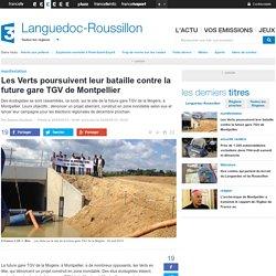 Les Verts poursuivent leur bataille contre la future gare TGV de Montpellier - France 3 Languedoc-Roussillon