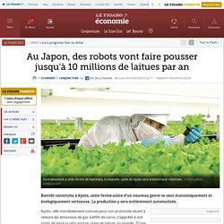 Au Japon, des robots vont faire pousser jusqu'à 10 millions de laitues par an