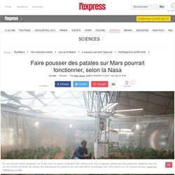 Faire pousser des patates sur Mars pourrait fonctionner, selon la Nasa