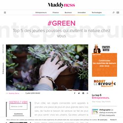 #Green : Top 5 des jeunes pousses qui invitent la nature chez vous - Maddyness