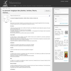 Le pouvoir magique des plantes, herbes, fleurs, résines,... « Wicca « Forum « Matemius