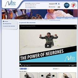 Le pouvoir des neurones - Institut NÉEL