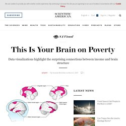 This Is Your Brain on Poverty - Scientific American Blog Network