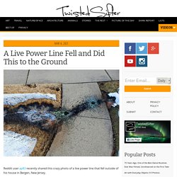 A Live Power Line Fell and Did This to the Ground » TwistedSifter