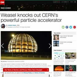 Weasel knocks out CERN's powerful particle accelerator