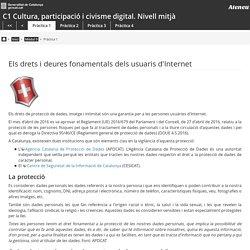 Els drets i deures fonamentals dels usuaris d'Internet