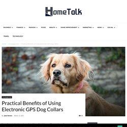 Practical Benefits of Using Electronic GPS Dog Collars