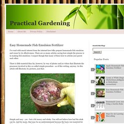 Practical Gardening: Easy Homemade Fish Emulsion Fertilizer