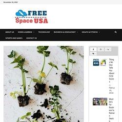 10 Practical Tips for Zero Waste Gardening -