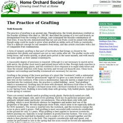 The Practice of Grafting --Home Orchard Society