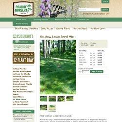 No Mow Lawn Seed : Prairie Nursery : Low Maintenance Grass