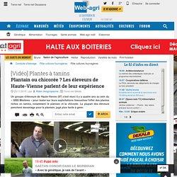 Prairies riches en tanins plantain et chicorée - Giee Haute-vienne
