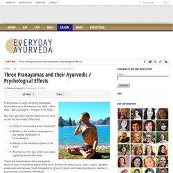 Three Pranayamas and their Ayurvedic / Psychological Effects - Ayurveda