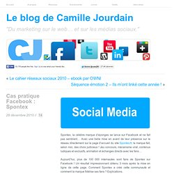 Cas pratique Facebook : Spontex | LE MARKETING SUR LE WEB
