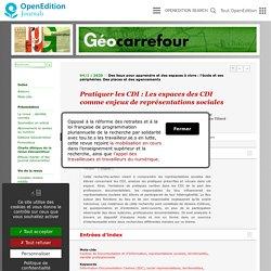 Pratiquer les CDI: Les espaces des CDI comme enjeux de représentations sociales