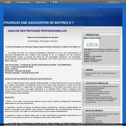 ANALYSE DES PRATIQUES PROFESSIONNELLES - Le blog de AMD06