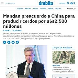 Mandan preacuerdo a China para producir cerdos por u$s2.500 millones