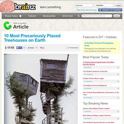 10 Most Precariously Placed Treehouses on Earth