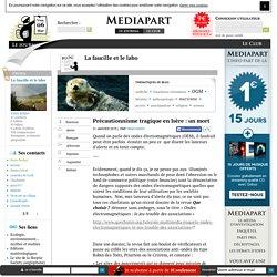 Précautionnisme tragique en Isère : un mort
