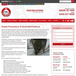 Simple Precautions To Avoid Rat Problems