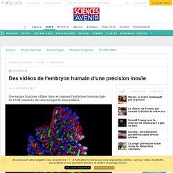 Des vidéos de l'embryon humain d'une précision inouïe - Sciencesetavenir.fr