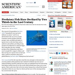 Predatory Fish Have Declined by Two Thirds in the Last Century