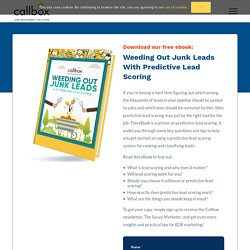 Weeding Out Junk Leads with Predictive Lead Scoring - Callboxinc.com - B2B Lead Generation Company