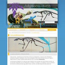 Los predinosaurios « Museos vivos