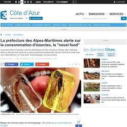 """La préfecture des Alpes-Maritimes alerte sur la consommation d'insectes, la """"novel food"""" - France 3 Côte d'Azur"""