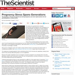Pregnancy Stress Spans Generations